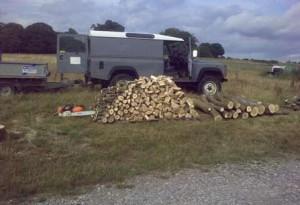 firewood3
