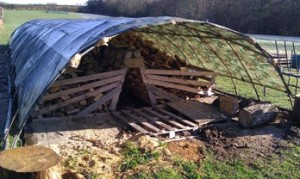 firewood_shelter